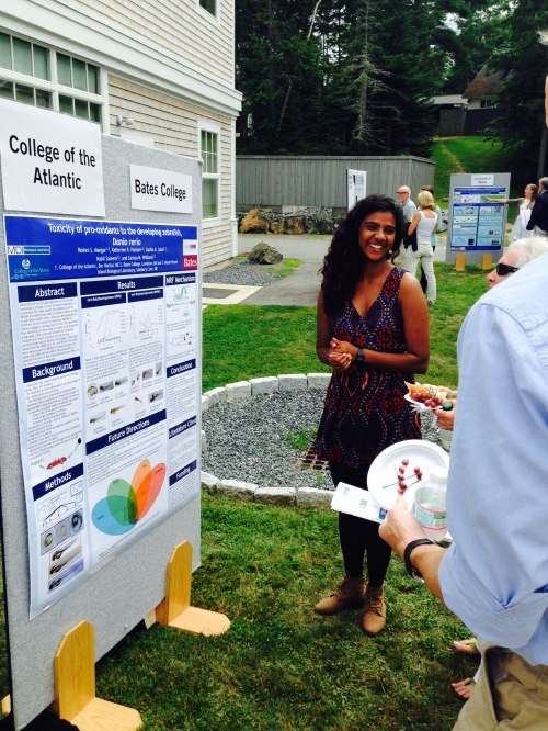 Roshni Mangar '15 demonstrates research on zebra fish she's completed as an intern at MDI Biological Laboratories this summer, during a media event at the lab Aug. 4.